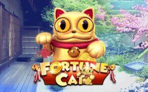 Fortune-Cat